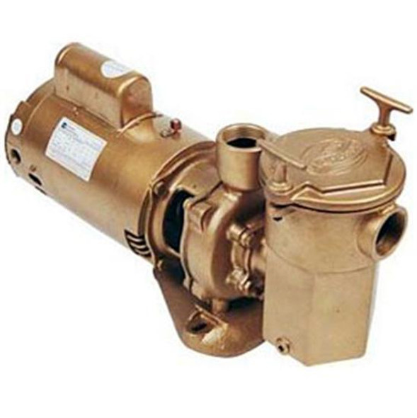 Advantage Commercial Bronze In-Ground Pool Pump 1 HP