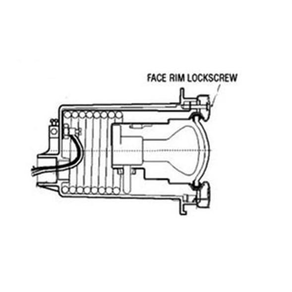 Hayward Face Rim Lockscrew with Fastener
