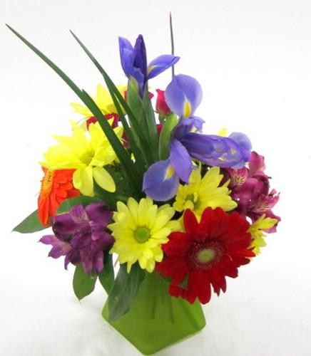 Iris and Daisies