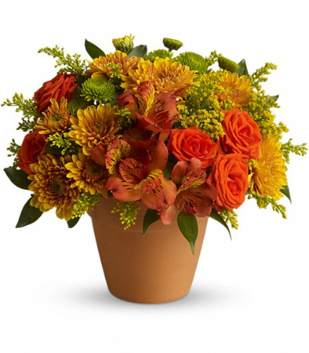 The radiant bouquet includes orange spray roses, dark orange alstroemeria, gold cushion spray chrysanthemums and green button spray chrysanthemums accented with assorted greenery.