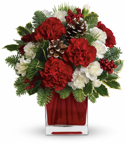 Red carnations and white miniature carnations are accented with tips of noble fir, white pine, holly and assorted greens. Delivered in Teleflora's bright red glass cube.