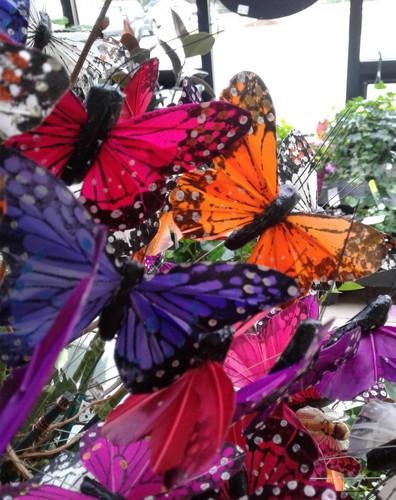 """4"""" Butterfly"""