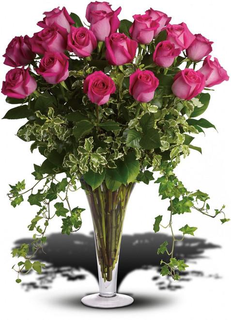 Delux  2 Dozen Hot Pink Roses