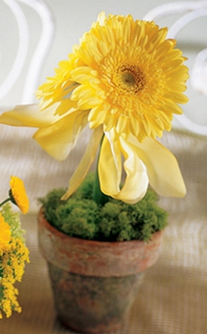 Flowerbug Tablescape
