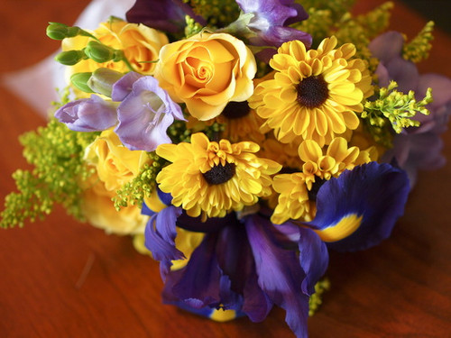 Iris, Daisies, Asters, Freesia, & Roses