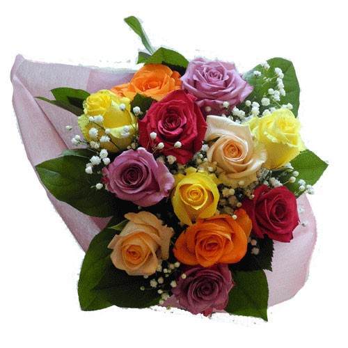 When in doubt for the favorite roses color, choose an carnival array of colors! It will make their day!