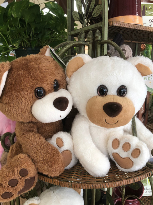 Cute soft teddy bear you just want to cuddle. Colors may vary. Available in creme, tan, and brown.