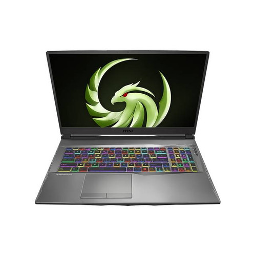 """MSI Alpha 17 A4DEK-011 17.3"""" Gaming Laptop (2.90 GHz AMD Ryzen 7-4800H, 16 GB DDR4 SDRAM, 1 TB SSD, Windows 10 Home)"""