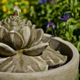Smithsonian Lotus Fountain detail