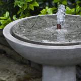 Hydrangea leaves bird bath fountain top detail