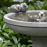 Juliet Bird Bath Fountain detail
