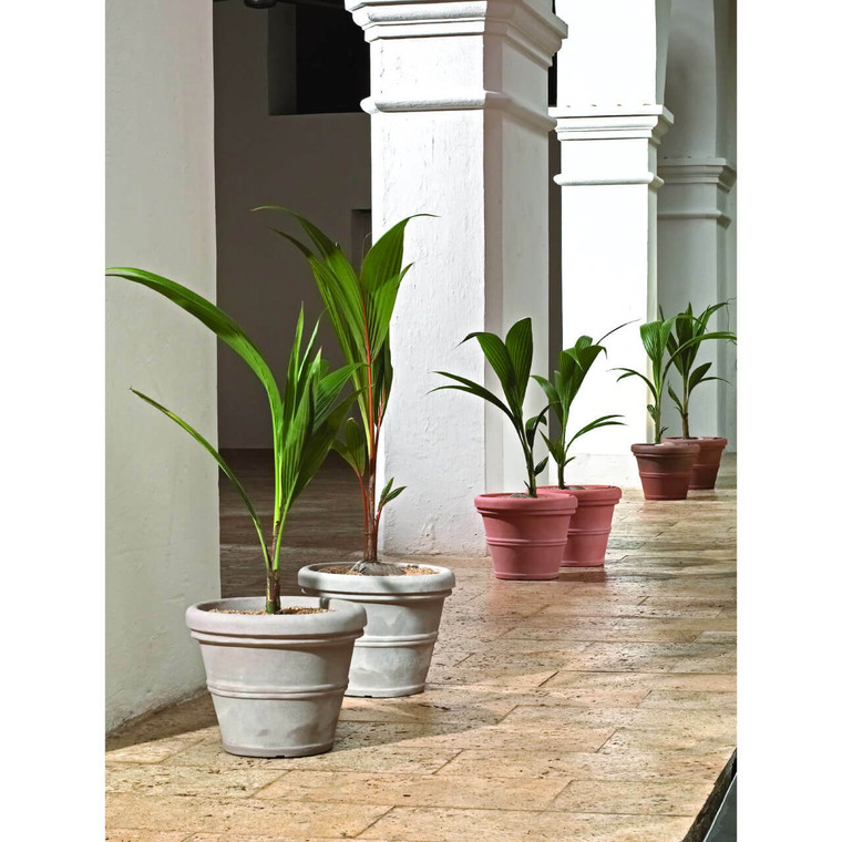 Brunello Rolled Rim Commercial Wide Bottom Planters
