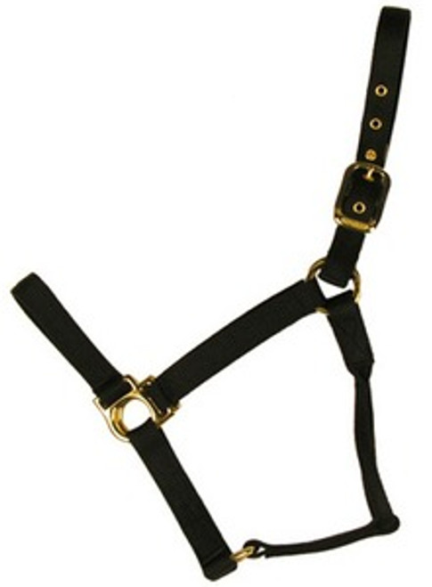 Halter Nylon Basic Non-Adjustable