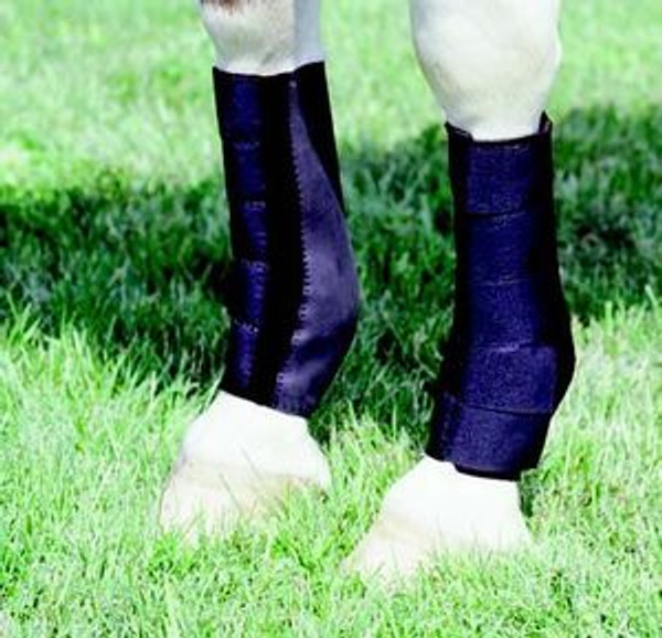 Boot Tendon Ankle Neopren Front pair