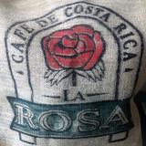 NEW ARRIVAL Costa Rica SHB Naranjo La Rosa Green & Roasted
