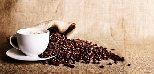 Brazil Cerrado Gourmet Fresh Roasted Coffee Beans
