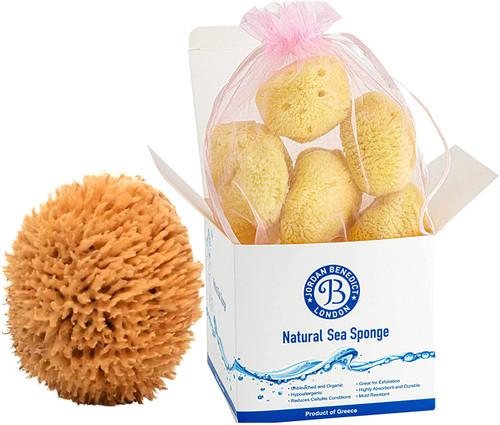 Jordan Benedict Natural Sea Sponges Set