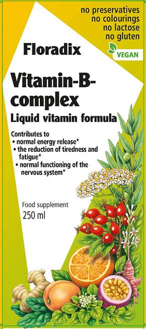 Floradix General Health Vitamin B Complex Liquid Formula - 250 ml