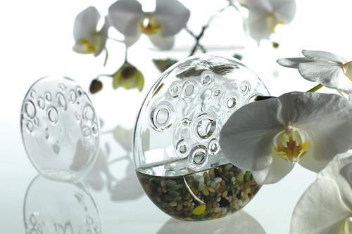 Dream Vase - Set of 2