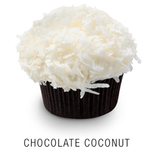 Chocolate Coconut Cupcakes - One Dozen