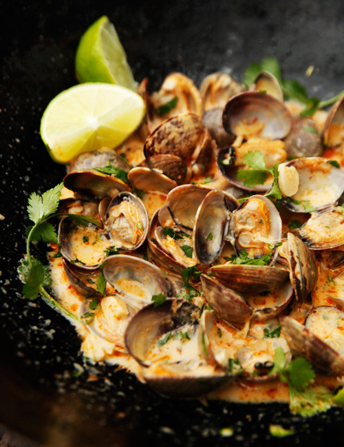 Red Curry, Coconut, and Ginger Infused Steamed Clams - (Free Recipe below)