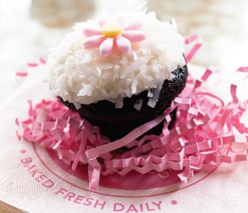 Pink Daisy Coconut Chocolate Cupcakes - One Dozen