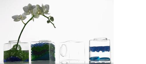 Cadence Vase