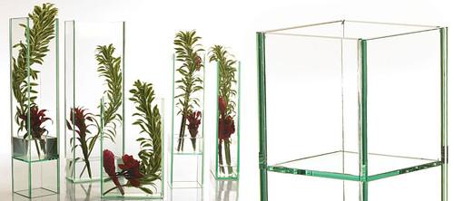 Duplex Large Oversized Glass Vases - Set of 2