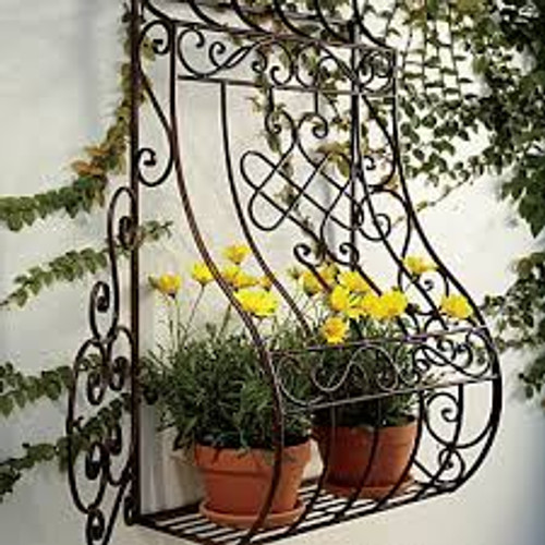 French Iron Scroll Wall Planter