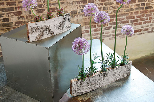 Birch Tube Planter, available in 2 sizes