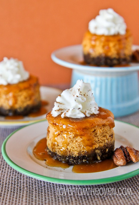 Mini Pumpkin Cheesecakes With Gingersnap Crust - (Free Recipe below)
