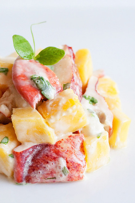 Lobster and Mango Salad - (Free Recipe below)