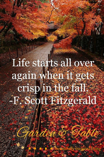 Life starts all over again when it gets crisp in the fall... #Quotes