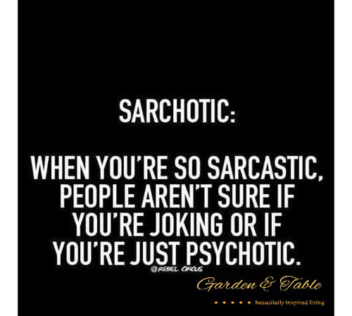 When you're so sarcastic.... #Quotes