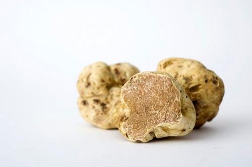 Fresh White Truffles (Italy) - order ASAP for the Holidays