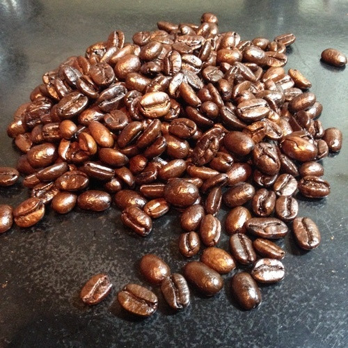 5 lb. Sabertooth Roast (80oz) Caveman Coffee