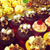 Sinful Alcohol Infused Cupcakes - One Dozen