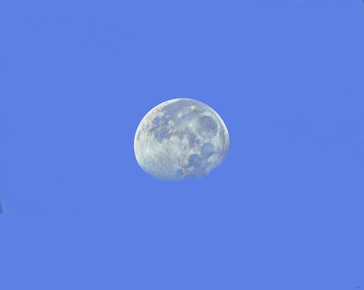California Moon