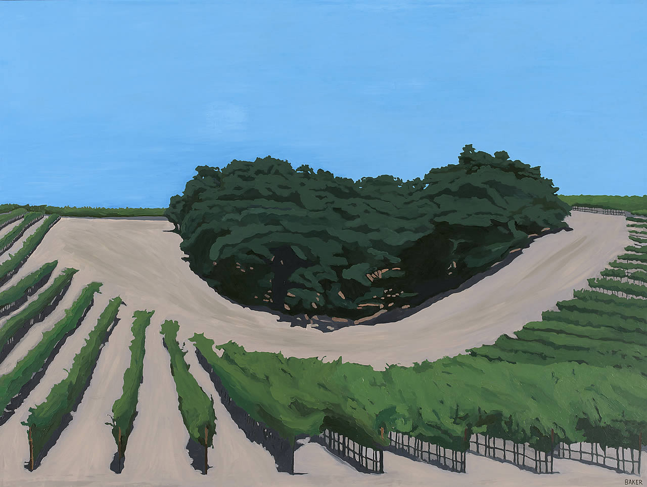 Vineyard with Old Oaks