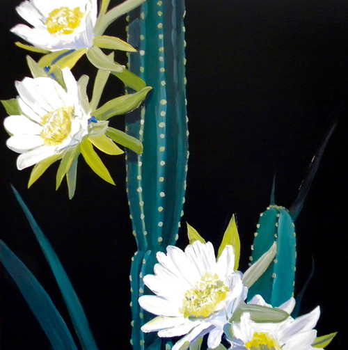 view Night Blooming Cactus