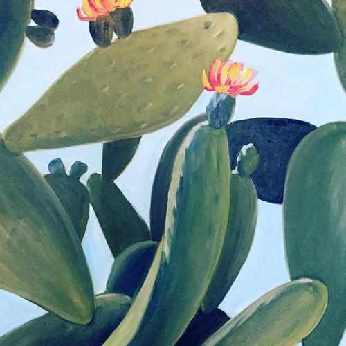 view Cow Tongue Cactus