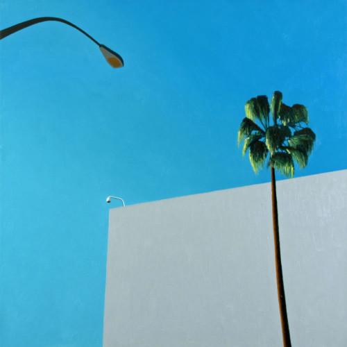 view #bluesky #palmtree #beverlyhills #losangeles #la