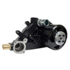 Girdle installed with PRW 1434606 (black ceramic water pump)  and 2634600 (pulley)