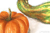 """Gourds 01, original still life Copic drawing by artist Oksana Ossipov. Copic markers on paper, 8.3 by 11.7"""". Close-up view."""