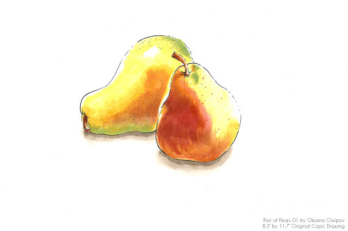 "Pair of Pears 01, original still life Copic drawing by artist Oksana Ossipov. Copic markers on paper, 8.3 by 11.7"". Full view."