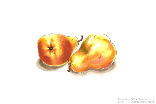 "Pair of Pears 02, original still life Copic drawing by artist Oksana Ossipov. Copic markers on paper, 8.3 by 11.7"". Full view."