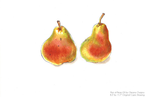 """Pair of Pears 03, original still life Copic drawing by artist Oksana Ossipov. Copic markers on paper, 8.3 by 11.7"""". Full view."""