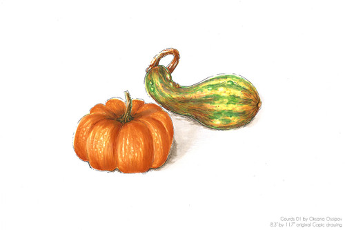 """Gourds 01, original still life Copic drawing by artist Oksana Ossipov. Copic markers on paper, 8.3 by 11.7"""". Full view."""