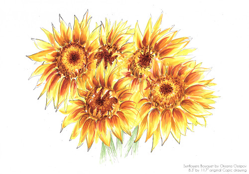 Sunflower Bouquet, original still life Copic drawing by artist Oksana Ossipov. Copic markers on paper, 8.3 by 11.7 in. Full view.