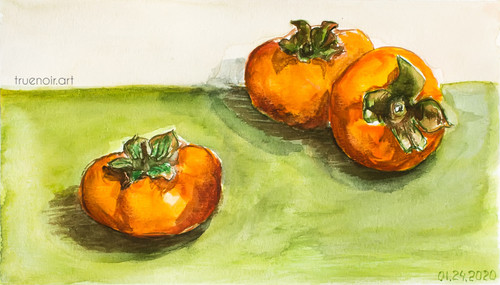 Three Persimmons by Oksana Ossipov 5.5 x 8.5 in, Canson 138 lb paper, Watercolor
